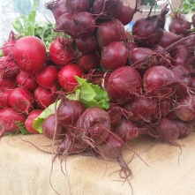 Beets at the Revere Farmer's Market