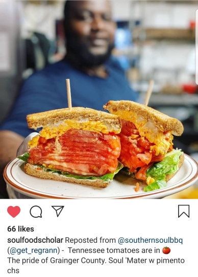 tomato pimento chz sandwich