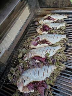 Kohei shiso stuffed fish