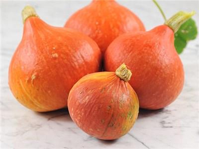 Red-Kuri squash
